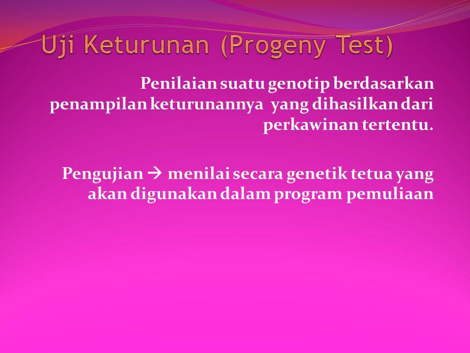 Uji Keturunan (Progeny Test)