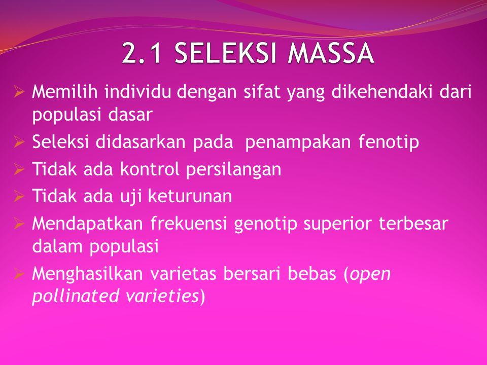 2.1 SELEKSI MASSA Memilih individu dengan sifat yang dikehendaki dari populasi dasar. Seleksi didasarkan pada penampakan fenotip.