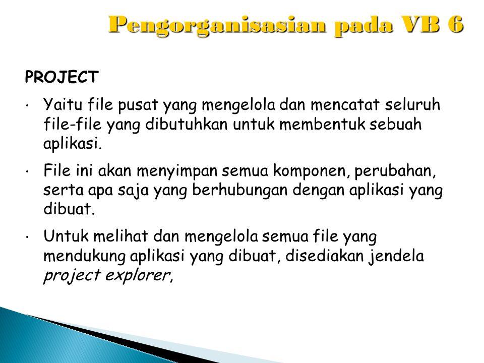 Pengorganisasian pada VB 6