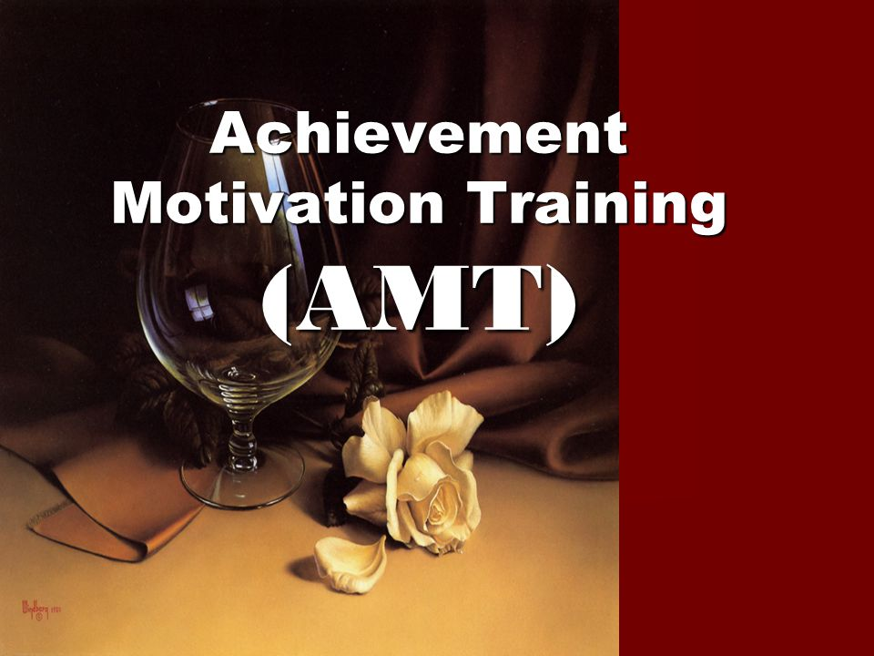 Achievement Motivation Training (AMT)