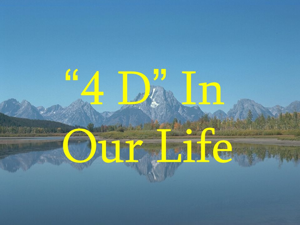 4 D In Our Life