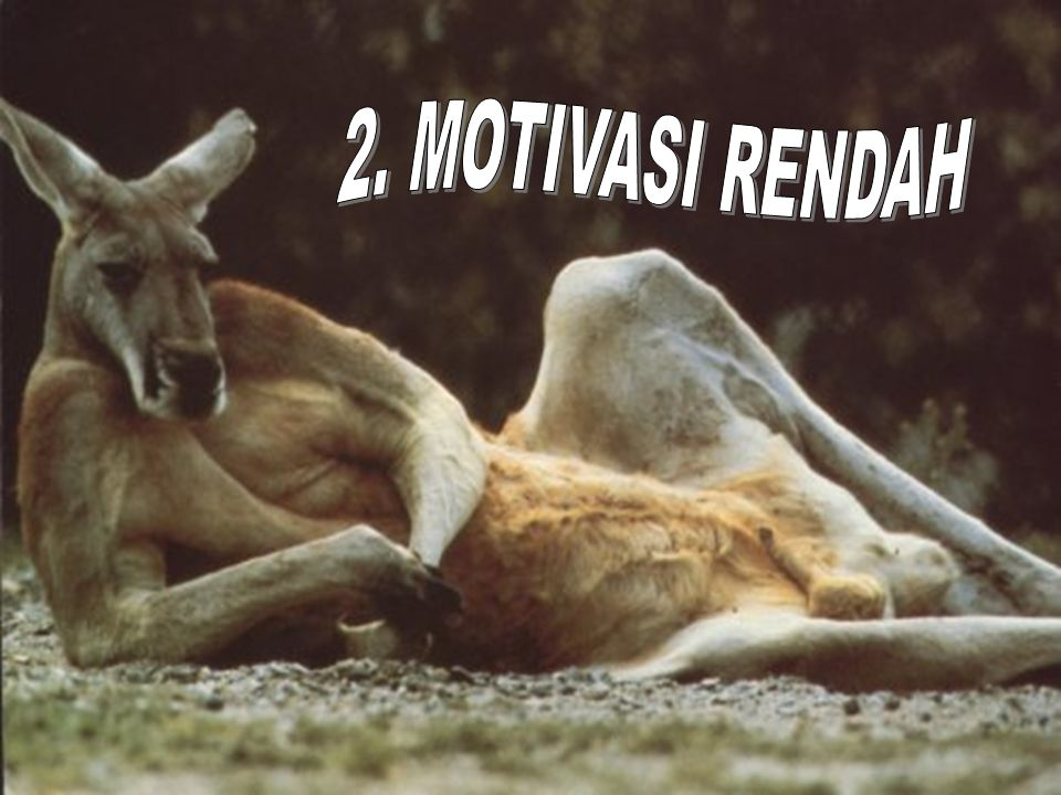 2. MOTIVASI RENDAH