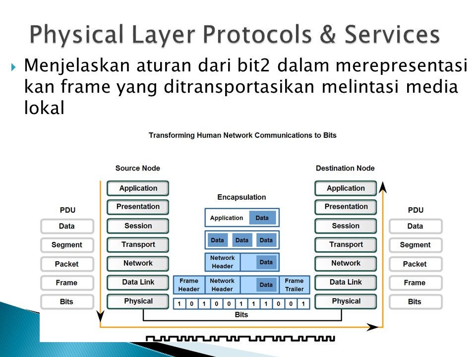 Physical Layer Protocols & Services