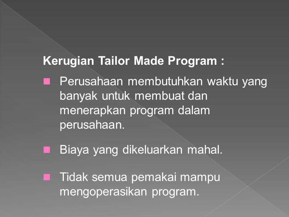 Kerugian Tailor Made Program :