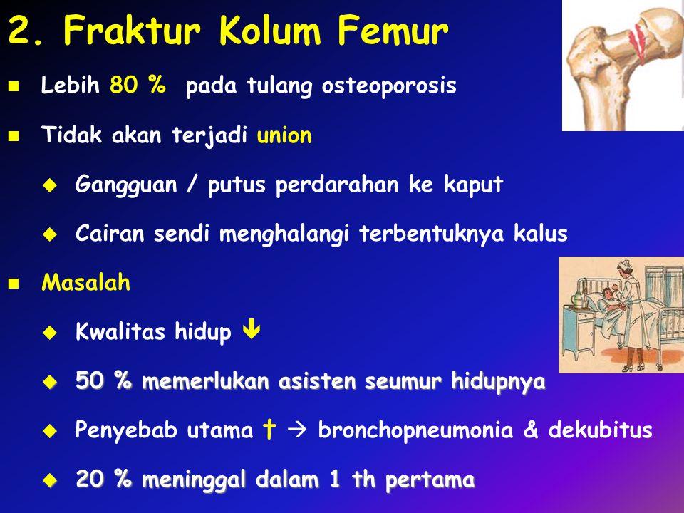 2. Fraktur Kolum Femur Lebih 80 % pada tulang osteoporosis