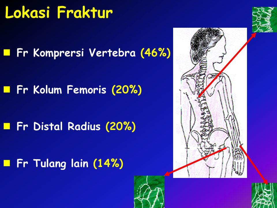 Lokasi Fraktur Fr Komprersi Vertebra (46%) Fr Kolum Femoris (20%)