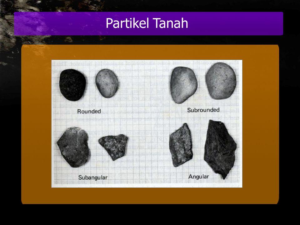 Partikel Tanah