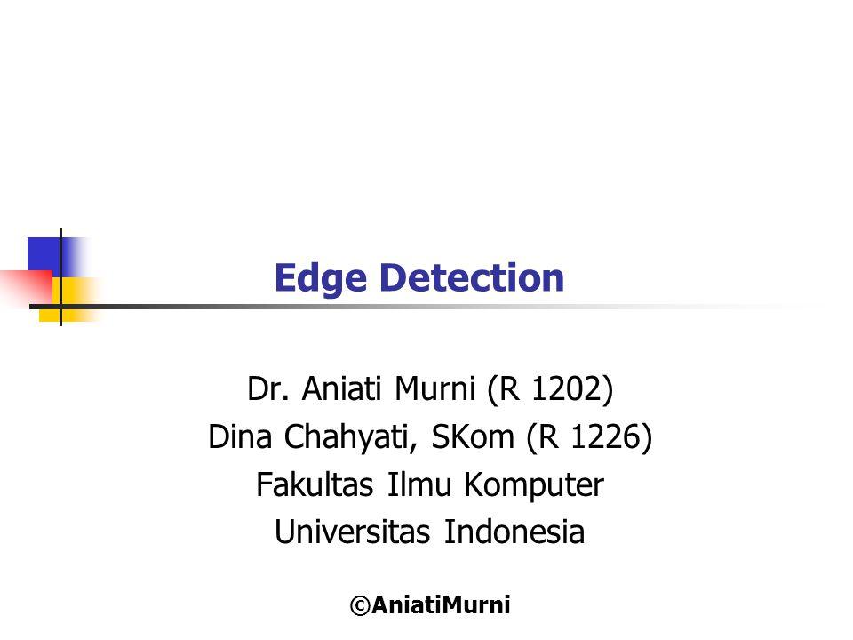 Edge Detection Dr. Aniati Murni (R 1202) Dina Chahyati, SKom (R 1226)