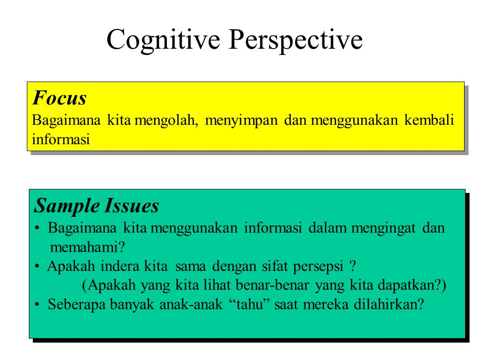 Cognitive Perspective