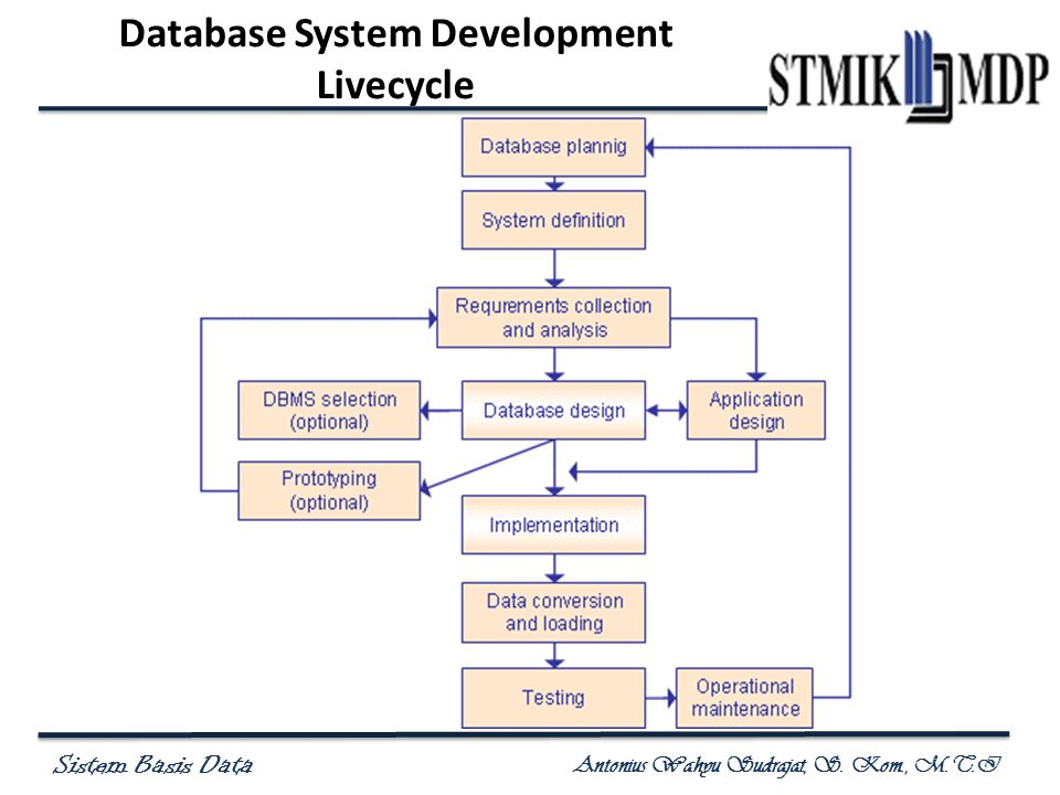Database System Development Livecycle