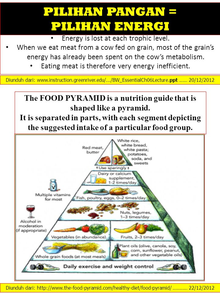 The FOOD PYRAMID is a nutrition guide that is shaped like a pyramid.
