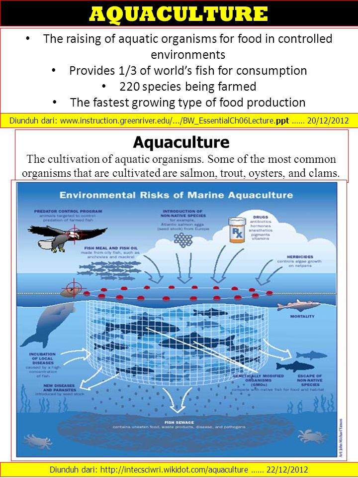 AQUACULTURE Aquaculture