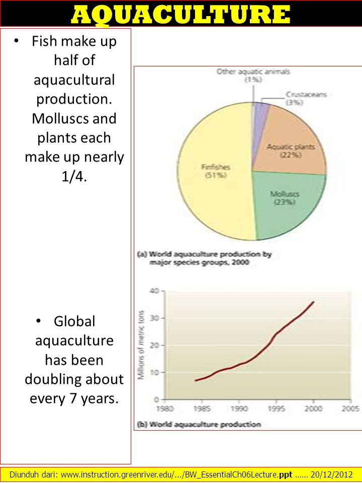 Global aquaculture has been doubling about every 7 years.