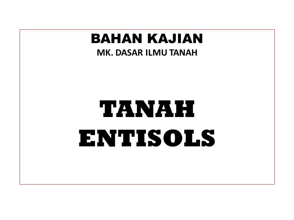 BAHAN KAJIAN MK. DASAR ILMU TANAH TANAH ENTISOLS
