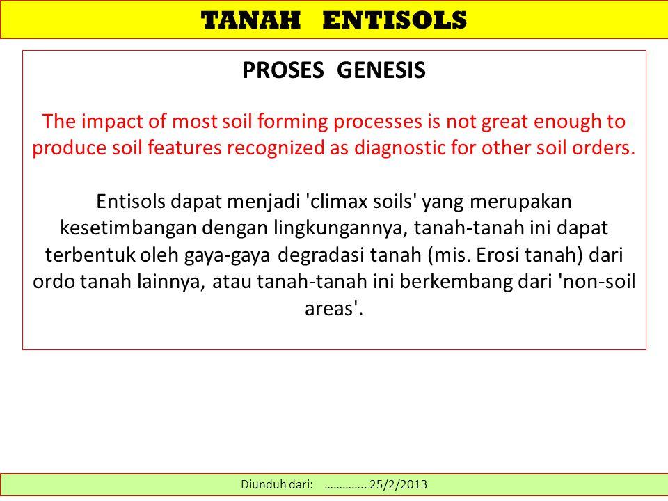 TANAH ENTISOLS PROSES GENESIS