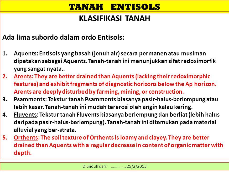 TANAH ENTISOLS KLASIFIKASI TANAH Ada lima subordo dalam ordo Entisols: