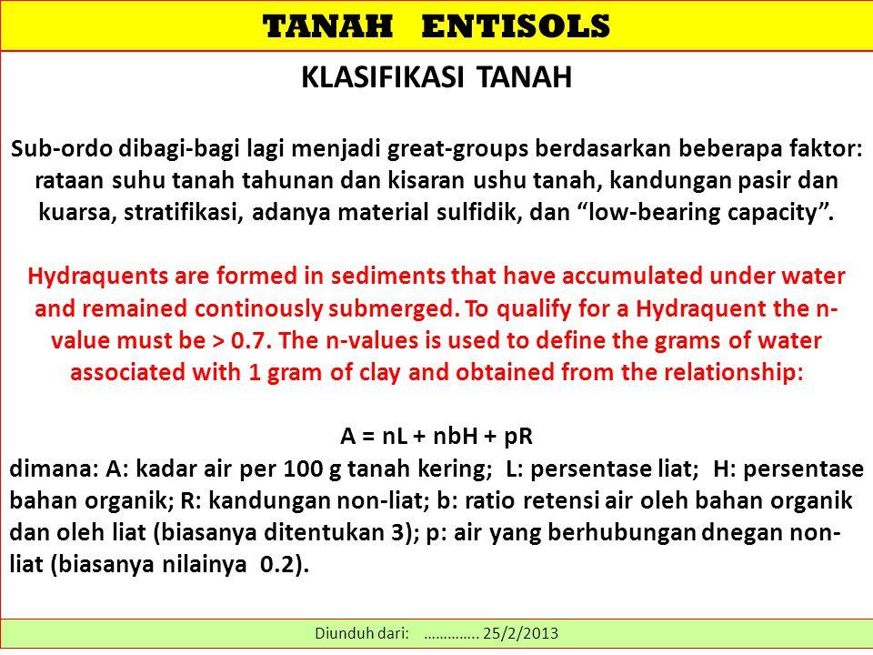 TANAH ENTISOLS KLASIFIKASI TANAH