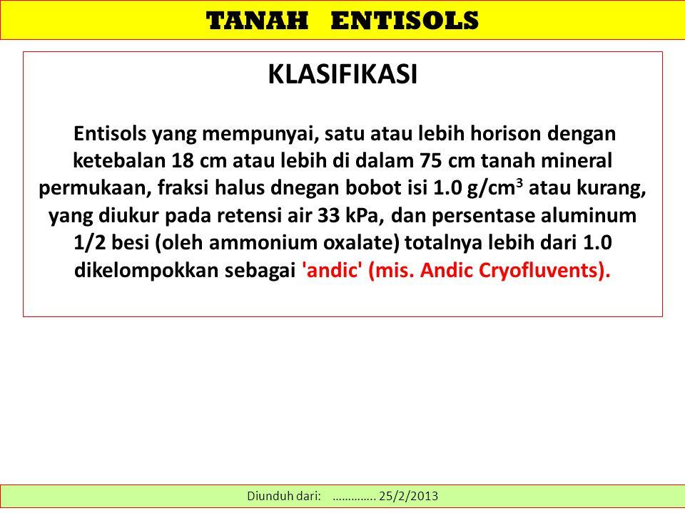KLASIFIKASI TANAH ENTISOLS