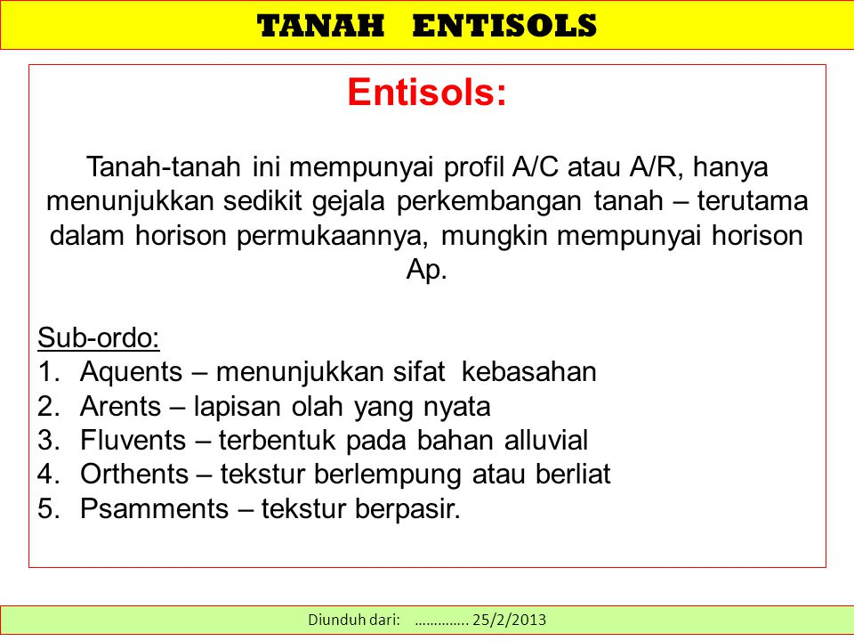Entisols: TANAH ENTISOLS