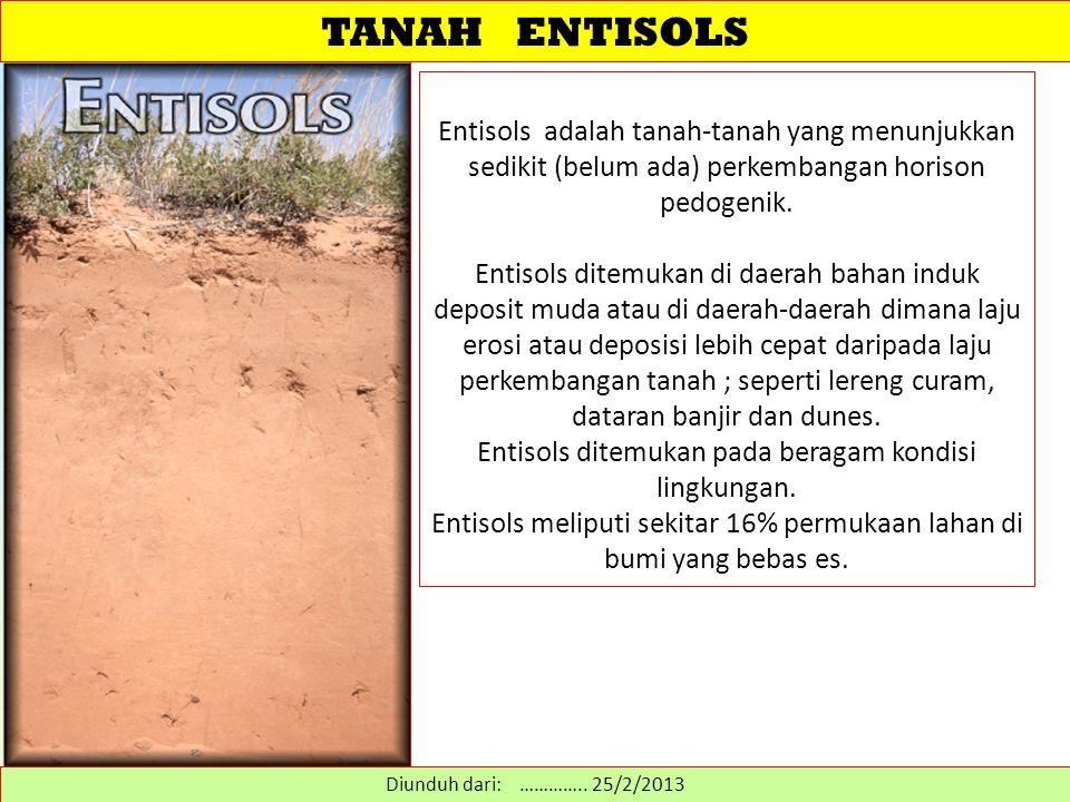 TANAH ENTISOLS Entisols adalah tanah-tanah yang menunjukkan sedikit (belum ada) perkembangan horison pedogenik.