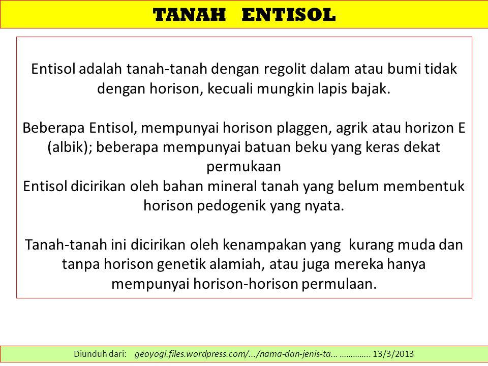 TANAH ENTISOL Entisol adalah tanah-tanah dengan regolit dalam atau bumi tidak dengan horison, kecuali mungkin lapis bajak.