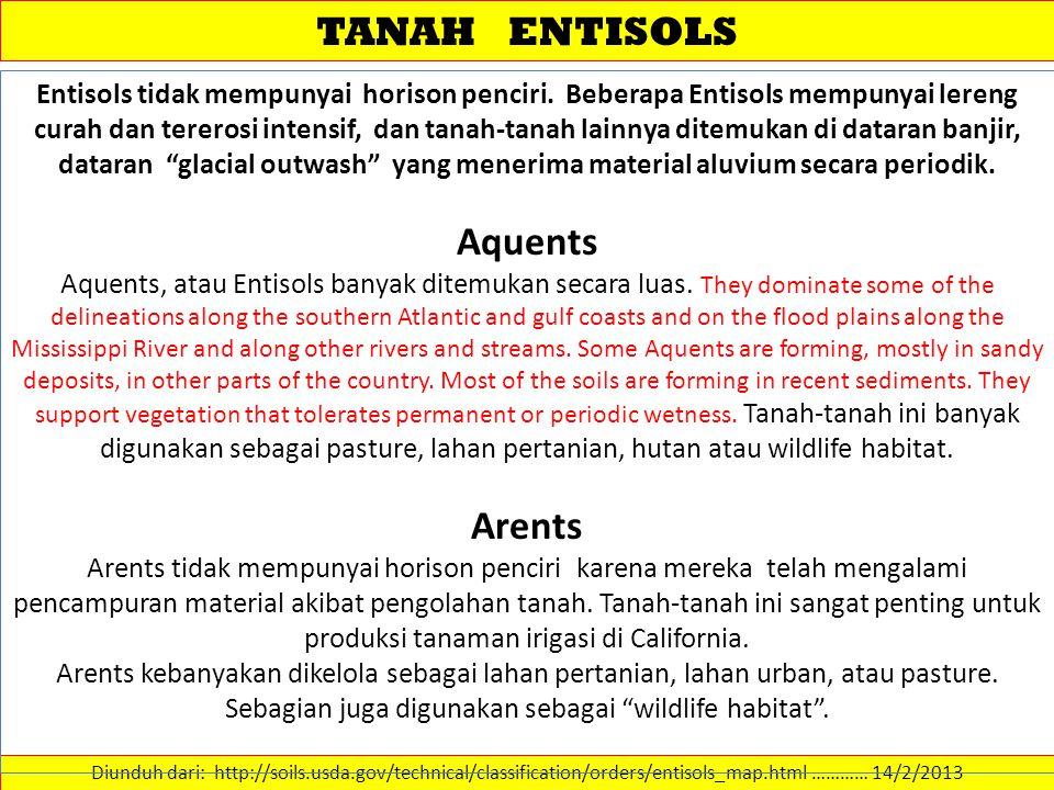 TANAH ENTISOLS Aquents Arents