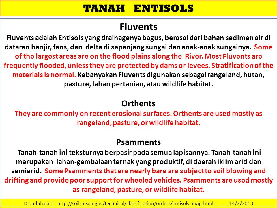TANAH ENTISOLS Fluvents Orthents Psamments
