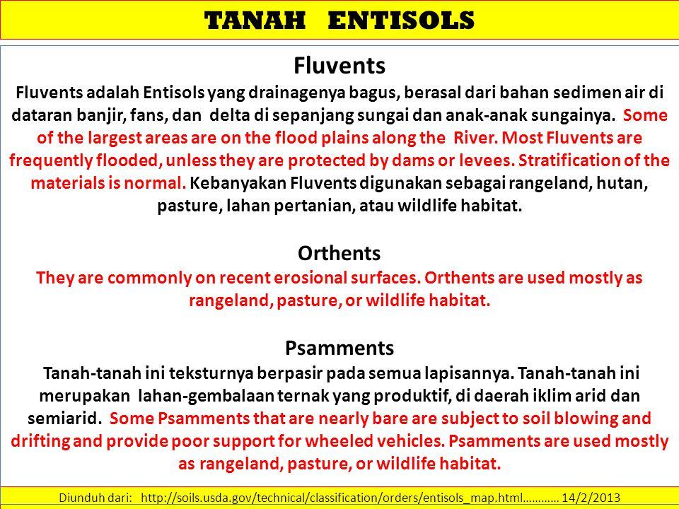 TANAH ENTISOLS Fluvents Orthents Psamments