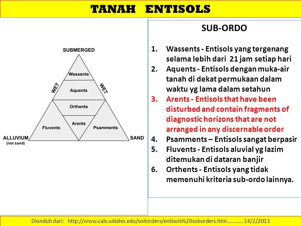 TANAH ENTISOLS SUB-ORDO