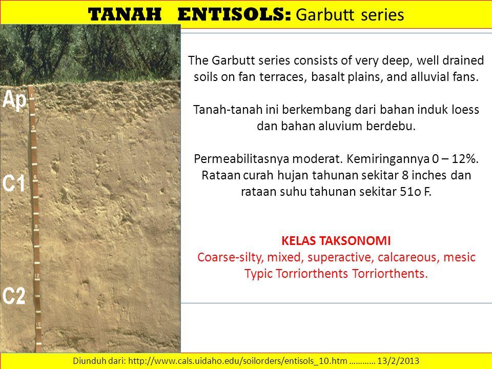 TANAH ENTISOLS: Garbutt series