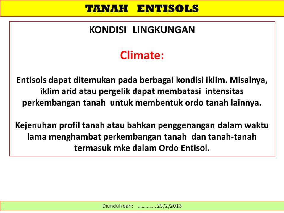 Climate: TANAH ENTISOLS KONDISI LINGKUNGAN
