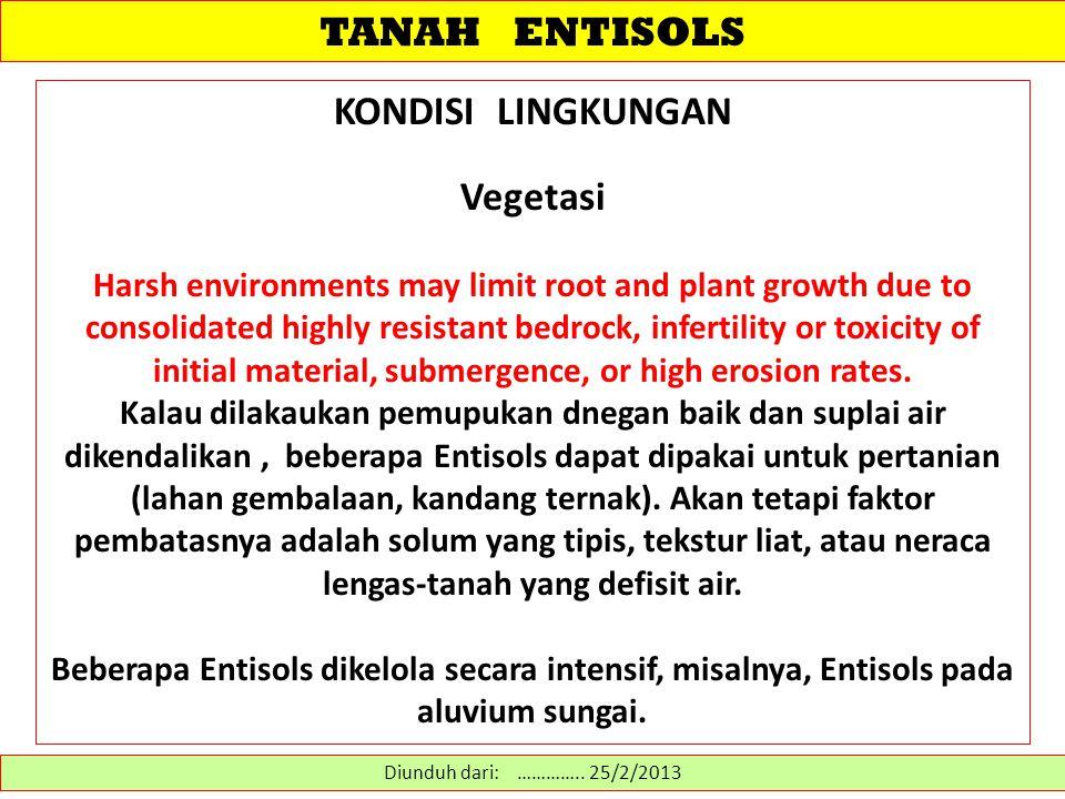 TANAH ENTISOLS KONDISI LINGKUNGAN Vegetasi