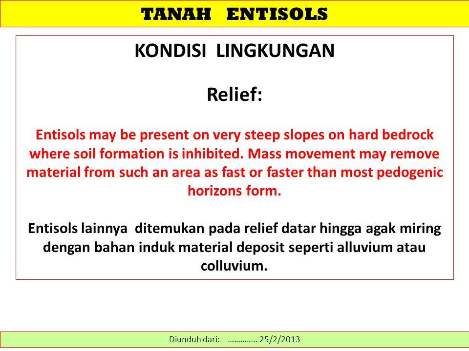 KONDISI LINGKUNGAN Relief: