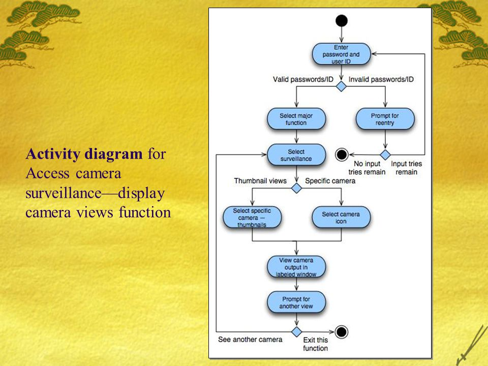 Activity diagram for Access camera surveillance—display camera views function
