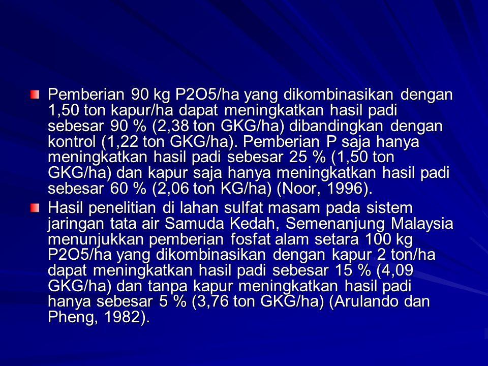 Pemberian 90 kg P2O5/ha yang dikombinasikan dengan 1,50 ton kapur/ha dapat meningkatkan hasil padi sebesar 90 % (2,38 ton GKG/ha) dibandingkan dengan kontrol (1,22 ton GKG/ha). Pemberian P saja hanya meningkatkan hasil padi sebesar 25 % (1,50 ton GKG/ha) dan kapur saja hanya meningkatkan hasil padi sebesar 60 % (2,06 ton KG/ha) (Noor, 1996).