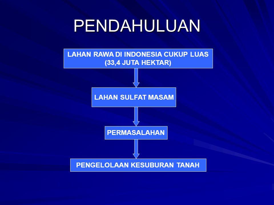 LAHAN RAWA DI INDONESIA CUKUP LUAS PENGELOLAAN KESUBURAN TANAH
