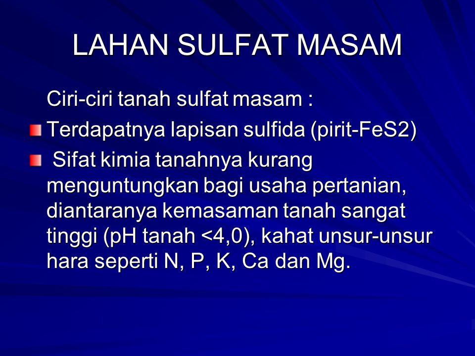 LAHAN SULFAT MASAM Ciri-ciri tanah sulfat masam :