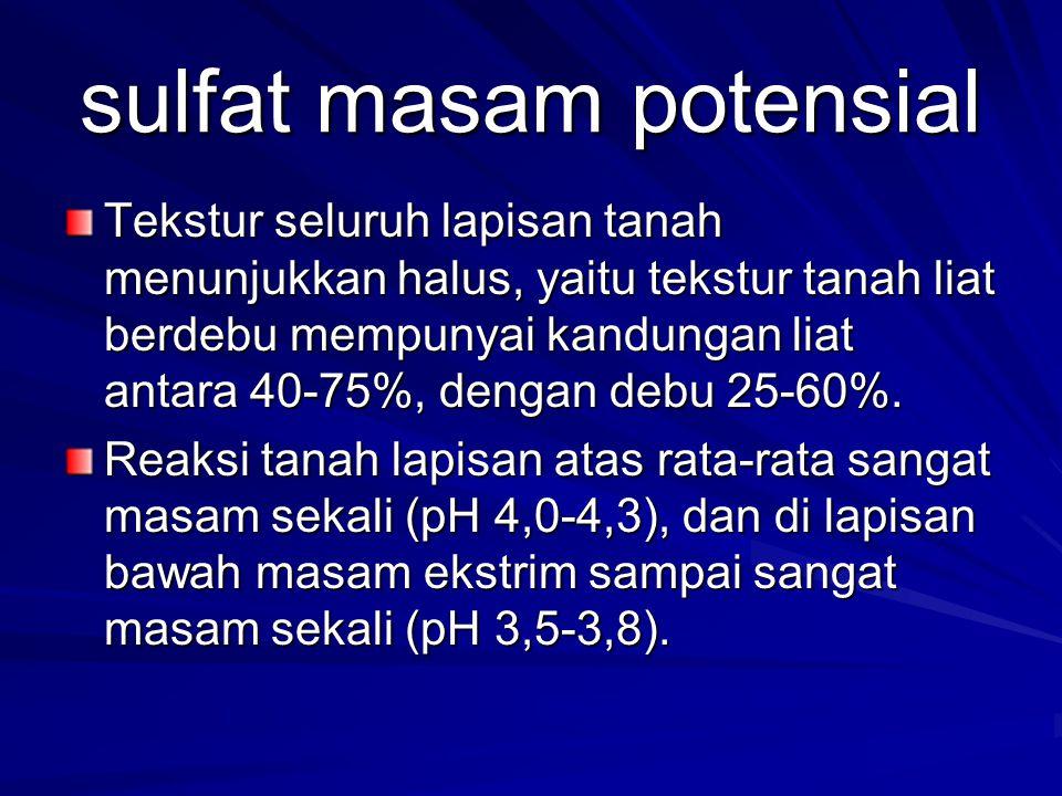 sulfat masam potensial