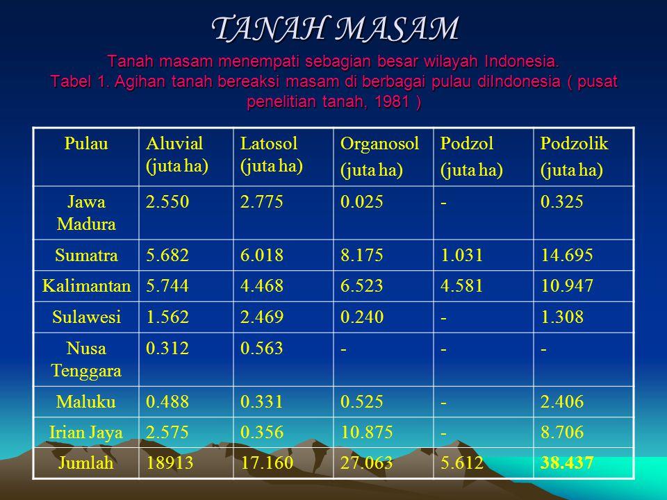 TANAH MASAM Tanah masam menempati sebagian besar wilayah Indonesia