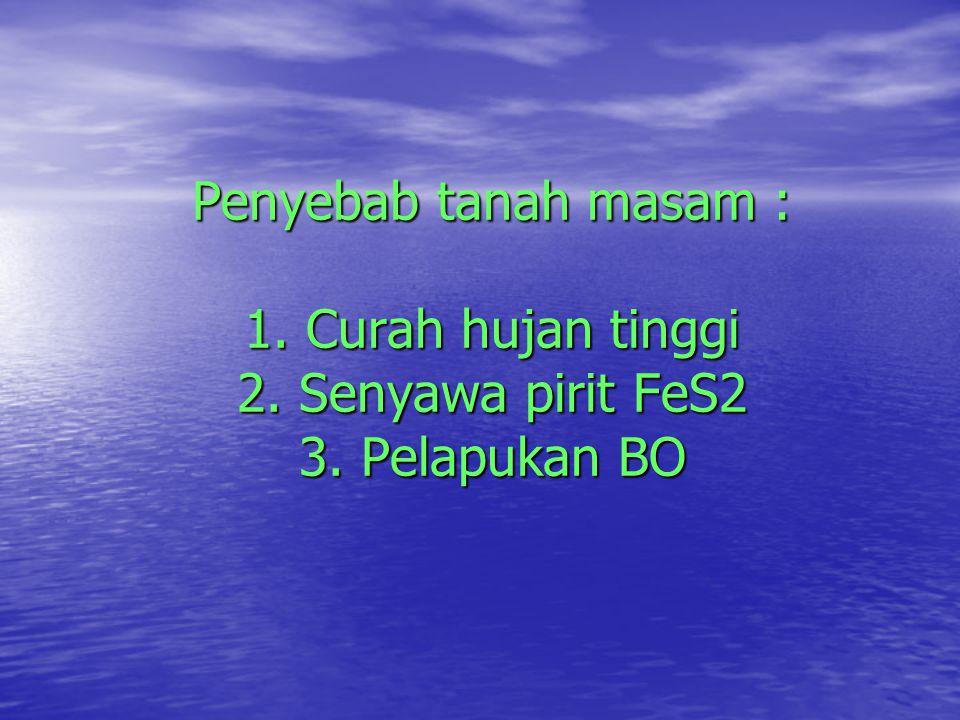 Penyebab tanah masam : 1. Curah hujan tinggi 2. Senyawa pirit FeS2 3