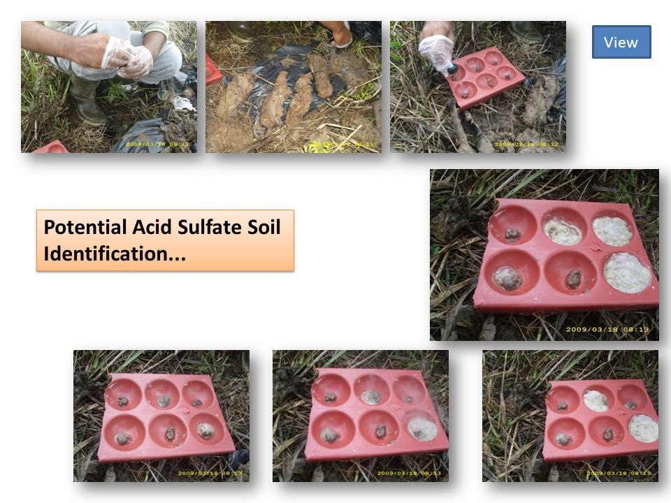 Potential Acid Sulfate Soil Identification...