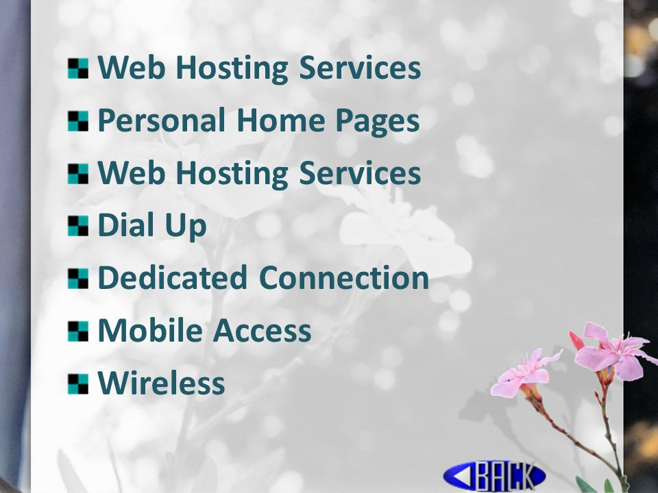 Web Hosting Services Personal Home Pages Dial Up Dedicated Connection Mobile Access Wireless