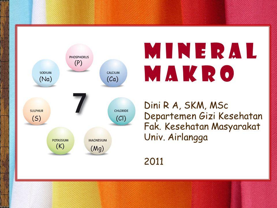 M I N E R A L M A K R O Dini R A, SKM, MSc Departemen Gizi Kesehatan Fak. Kesehatan Masyarakat Univ. Airlangga 2011