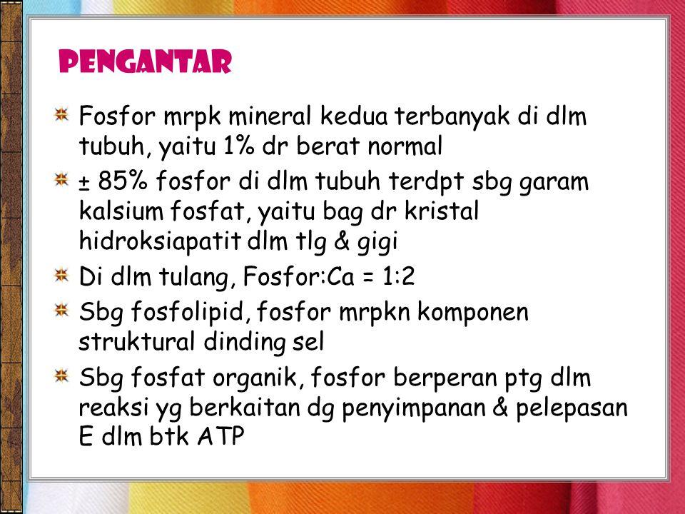 Pengantar Fosfor mrpk mineral kedua terbanyak di dlm tubuh, yaitu 1% dr berat normal.