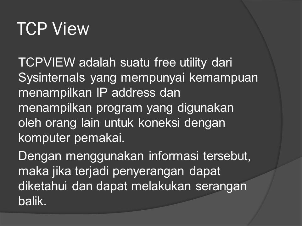 TCP View
