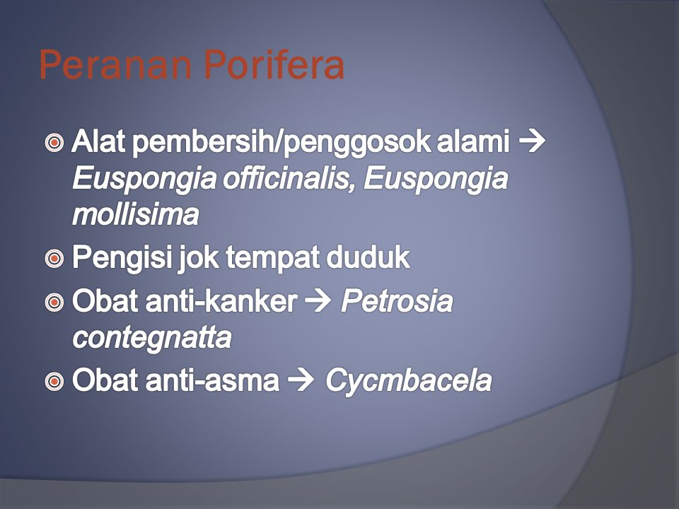 Peranan Porifera Alat pembersih/penggosok alami  Euspongia officinalis, Euspongia mollisima. Pengisi jok tempat duduk.