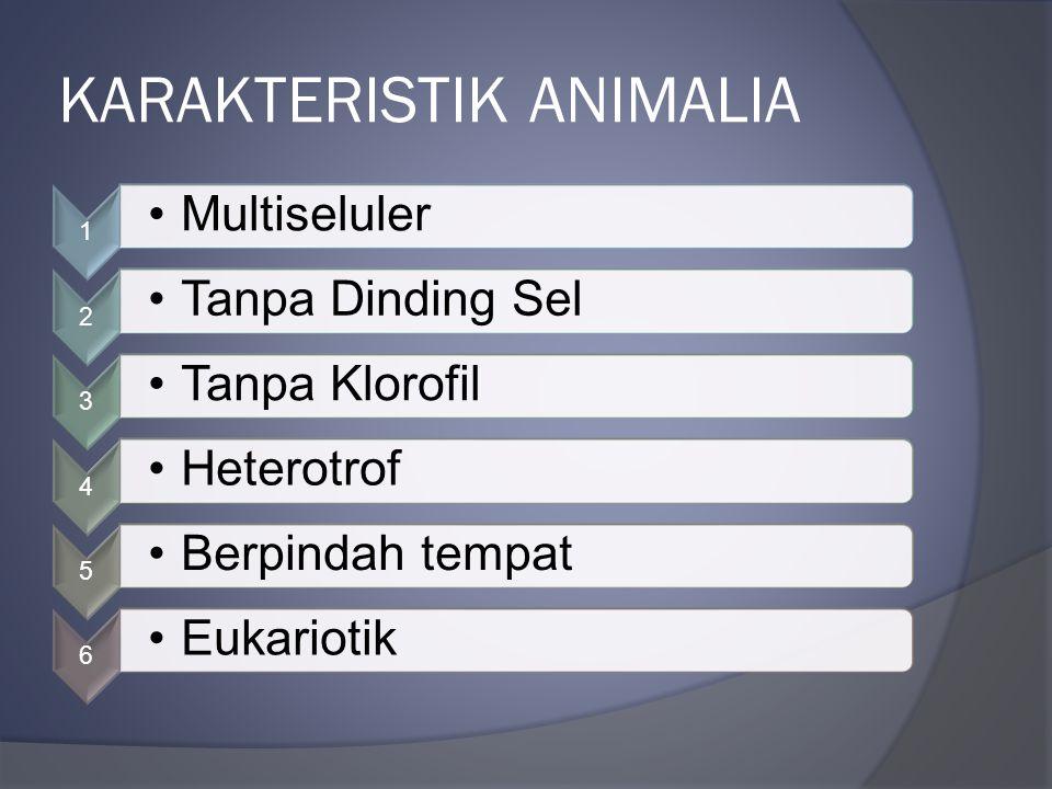 KARAKTERISTIK ANIMALIA