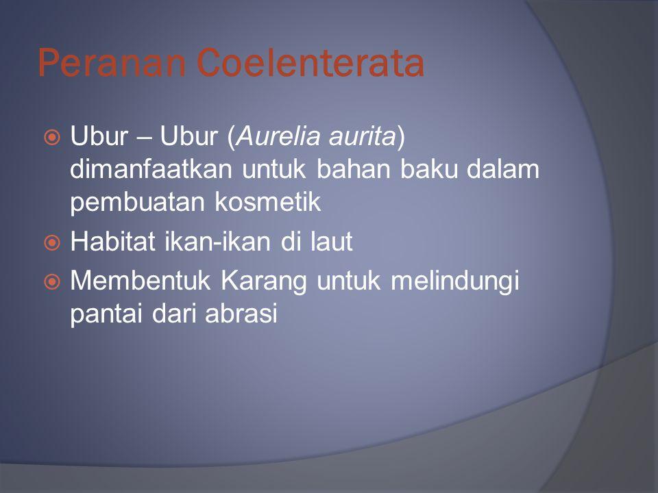 Peranan Coelenterata Ubur – Ubur (Aurelia aurita) dimanfaatkan untuk bahan baku dalam pembuatan kosmetik.
