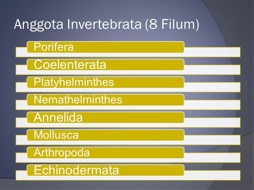 Anggota Invertebrata (8 Filum)
