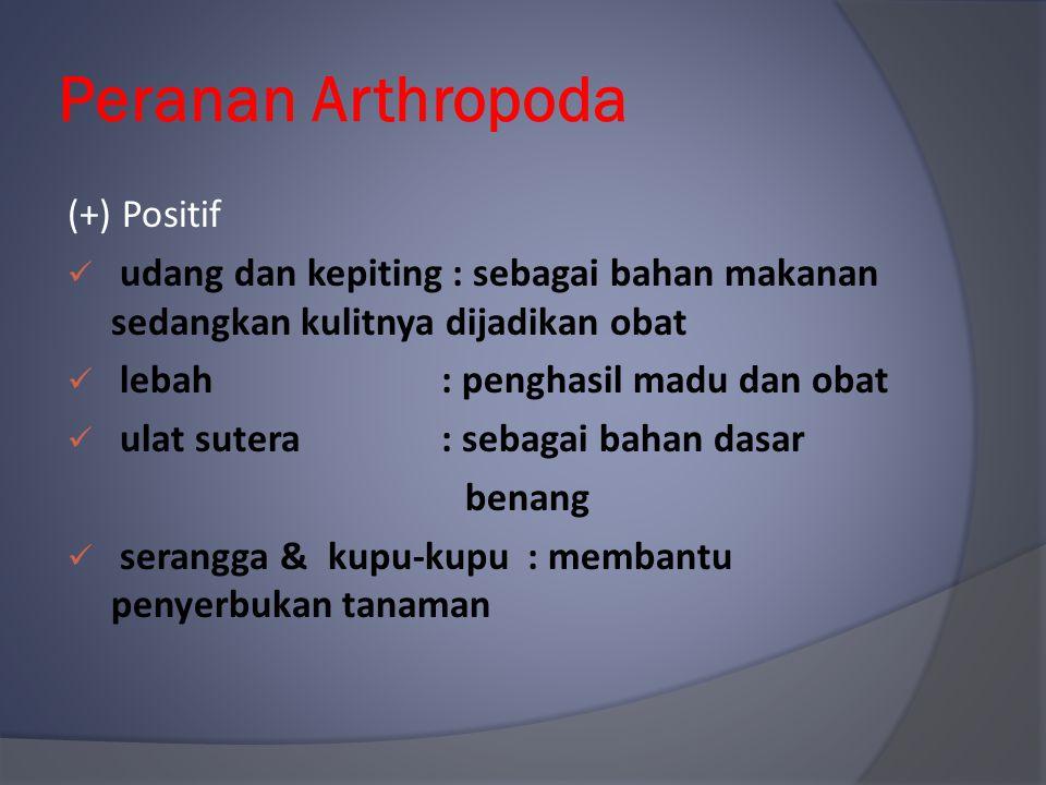 Peranan Arthropoda (+) Positif